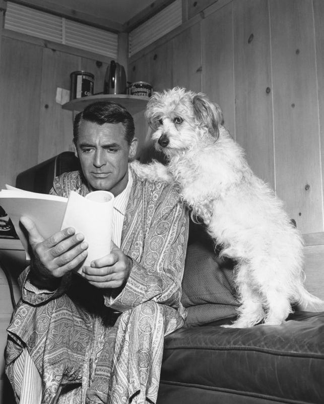 Cary Grant Studying His Script With A Friend