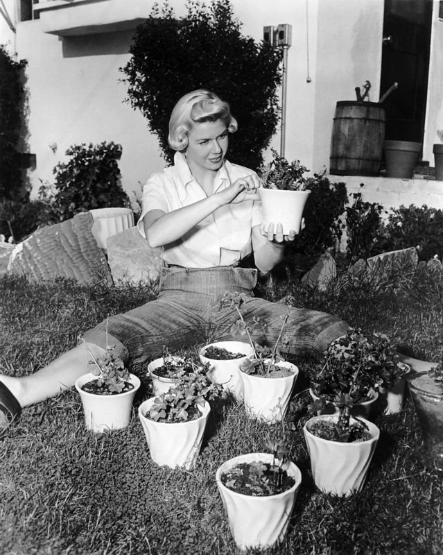 Green Fingered Doris Day