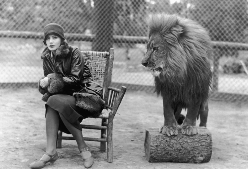 Greta & Leo The Lion At The Park