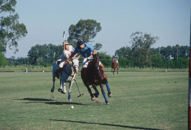 Argentine Polo Match