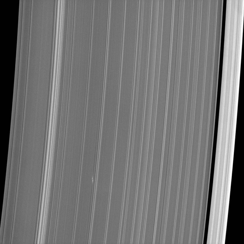 Saturn's Rings and Moonlet