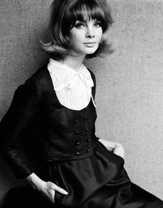 Shrimpton In Dior