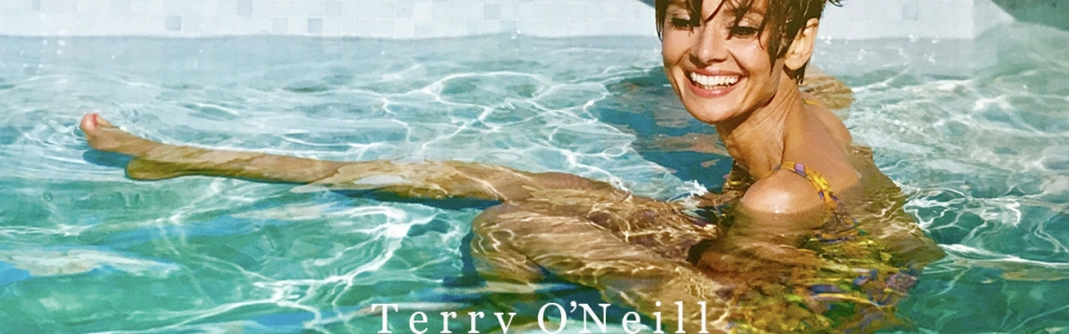 audrey swims banner copy