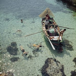 Snorkelling In The Shallows